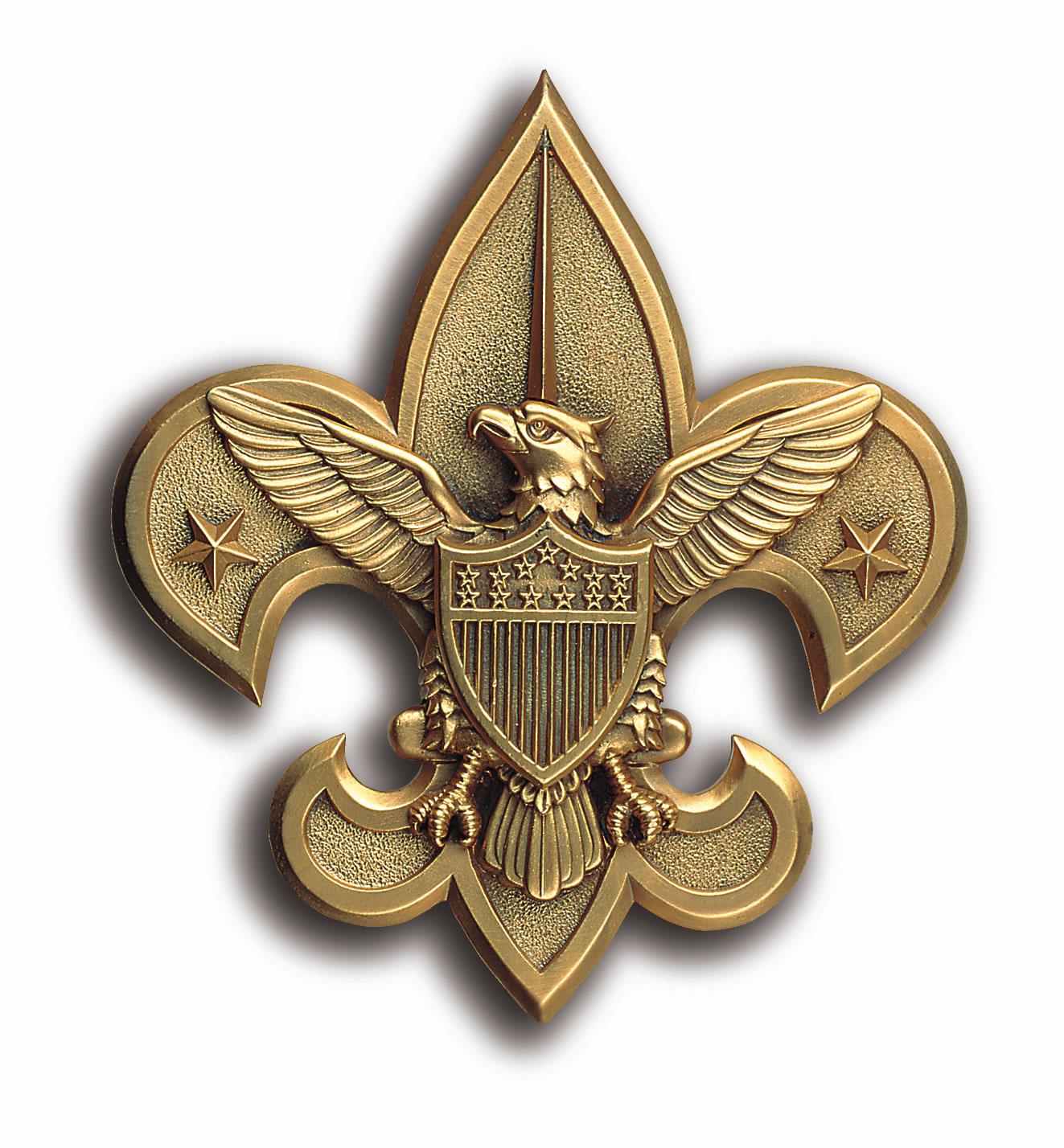 BSA Fleir de lis - gold relief 2